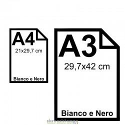 Stampe A4 e A3 in Bianco e...